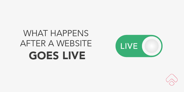 What happens when a website goes live?